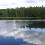 Лечебные сапропели озера Судобль